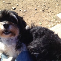 Photo taken at Stamford Dog Park by Rachel P. on 11/4/2012