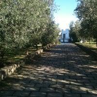 Photo taken at La Fattoria di Valentino by Maria Magdalena P. on 10/26/2014