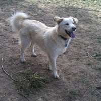 Photo taken at Elk Grove Off Leash Dog Park by Sherry J. on 12/10/2011