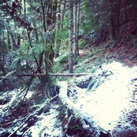 Photo taken at Mt Hood National Forest by Diana H. on 12/30/2012