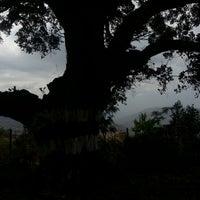 Photo taken at Wai by Abhishek P. on 12/31/2012