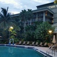 Doubletree By Hilton Hotel And Executive Meeting Center Palm Beach Gardens 16 Tips From 1036