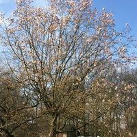 Photo taken at Belmonte Arboretum by Marcel B. on 3/26/2016