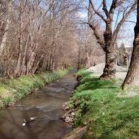 Photo taken at Kamaraerdei Ifjúsági Park (41) by Szabyx on 4/14/2013