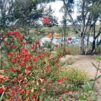 Photo taken at Lake Miramar Reservoir by Tonya S. on 4/2/2013