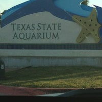 Photo taken at Texas State Aquarium by Ale Q. on 3/14/2013