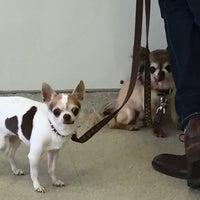 Photo taken at Park Animal Hospital by Brandi O. on 2/20/2016