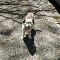 Photo taken at Tuckerman Hall Dog Run by Garry E. on 5/9/2016