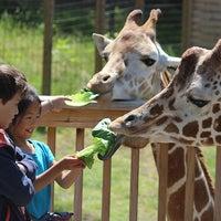 Photo taken at Elmwood Park Zoo by Elmwood Park Zoo on 3/14/2016
