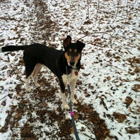 Photo taken at Broad Ripple Park Canine Companion Area by Nicole S. on 2/4/2013