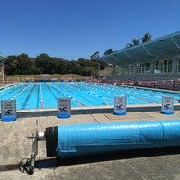 Ashfield aquatic centre inner west ashfield nsw for Ashfield swimming pool opening hours