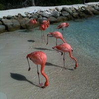 Photo taken at Renaissance Aruba Resort And Casino by Fabrizio P. on 7/19/2013