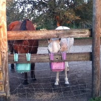 Photo taken at Lori's Barn by MaceyF on 6/11/2013