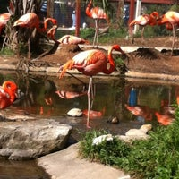 Photo taken at Riverbanks Zoo And Gardens by M Monica A. on 4/13/2013