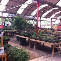 Photo taken at Jardineria Bordas by Alicia R. on 8/31/2012