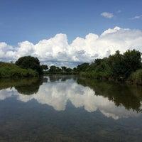 Photo taken at Parc Ornitologique du Teich by Jief L. on 8/3/2014