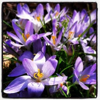 Photo taken at Erie Cemetery by Bethany R. on 4/8/2013