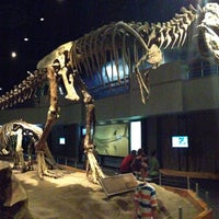 Photo taken at Royal Tyrrell Museum of Paleontology by Anthony L. on 8/26/2013