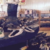 Photo taken at Indian River Fruits And Souvenirs by Abdullah TA1AB P. on 2/22/2015