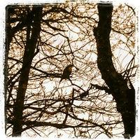 Photo taken at Hemlock Gorge by Chris S. on 4/15/2012