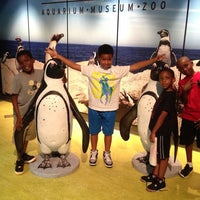 Photo taken at Greensboro Science Center by Jilian P. on 7/23/2013