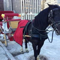 Photo taken at Grand Army Plaza by Walter A. on 1/27/2013