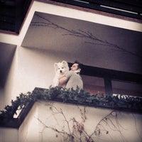 Photo taken at Heraldic Club by Raluca M. on 3/22/2014