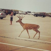 Photo taken at Robert Moses State Park Beach by Katie K. on 9/2/2012