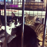 Photo taken at Centinela Feed & Pet Supplies by FWMJ k. on 9/29/2013