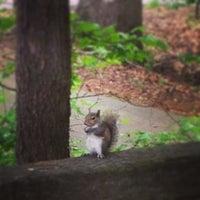 Photo taken at Suwanee Creek Park by Katherine B. on 5/8/2013