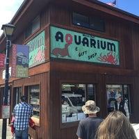 Photo taken at Morro Bay Aquarium by Kevin W. on 7/16/2016
