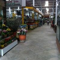 Photo taken at Mercado Municipal de Santo Amaro by Frederick K. on 3/19/2013