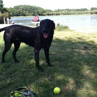 Photo taken at James Island County Park Dog Park by Kristin L. on 8/31/2013