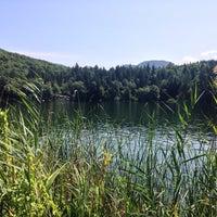 Photo taken at Großer Montiggler See / Lago Grande di Monticolo by Johannes K. on 8/6/2014