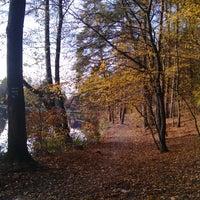 Photo taken at Přírodní Koupaliště Jureček by Lukáš Š. on 10/26/2013