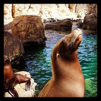 Photo taken at Sea Lion Cave by Angela D. on 6/19/2013
