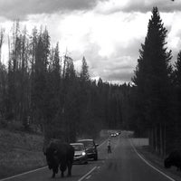 Photo taken at Yellowstone National Park - East Entrance by Richard S. on 8/27/2013