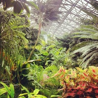 Photo taken at Krohn Conservatory by Dane K. on 4/26/2012