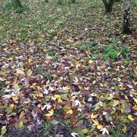 Photo taken at Elthorne Park by Jenn C. on 11/26/2014