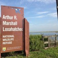 Photo taken at Arthur R. Marshall Loxahatchee National Wildlife Refuge by Crist J. on 6/24/2014