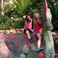 Photo taken at DinoLand U.S.A. by Matt V. on 2/22/2013