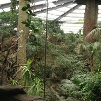 Photo taken at Henry Doorly Zoo and Aquarium by Dan R. on 7/21/2013