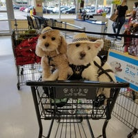 Photo taken at Petco by Ami S. on 3/22/2016