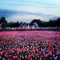Photo taken at Gorky Park by Alyona Komarova on 5/19/2013