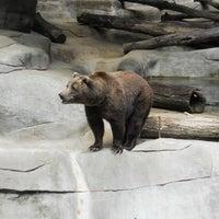 Photo taken at John Ball Zoo by Jake A. on 7/20/2012