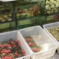 Photo taken at Chuk Yuen Seafood Restaurant 竹園海鮮飯店 by Yuichi I. on 12/6/2014
