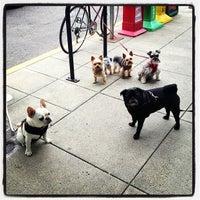 Photo taken at Starbucks by Randy T. on 6/16/2013