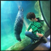 Photo taken at Sea Lion Cave by Rosemarie M. on 11/28/2013