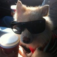 Photo taken at Starbucks by norma J. on 12/24/2012