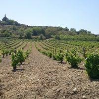 Photo taken at Kamanterena Winery by Irina S. on 5/3/2014